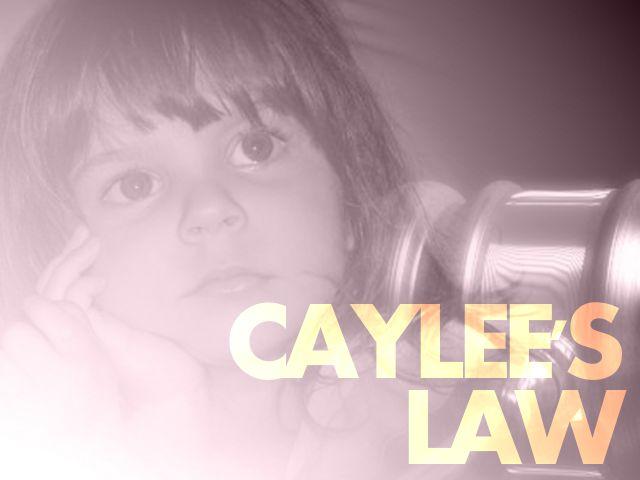nc caylee's law